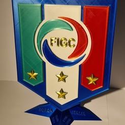 20201017_162002.jpg Download STL file Logo italia figc • 3D printing model, zimatera