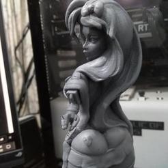 SecretGadgetb2.jpg Download STL file Secret Gadget STL • Design to 3D print, aspan72