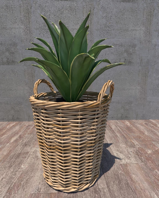 2.effectsResult.jpg Download free STL file PLANT • 3D printable model, nigthwolf611