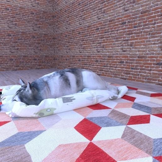 Télécharger fichier STL gratuit CHIEN husky • Plan à imprimer en 3D, nigthwolf611