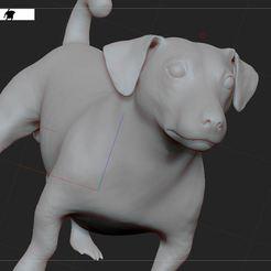 Télécharger modèle 3D gratuit Jack Russell , nicoco3D