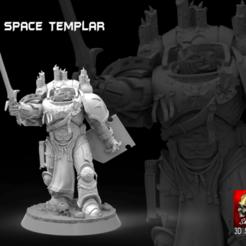 Descargar STL space templar  (no miniature), SKULLHILL