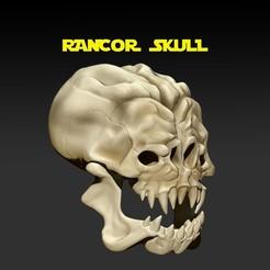 Descargar modelos 3D RANCOR SKULL, SKULLHILL