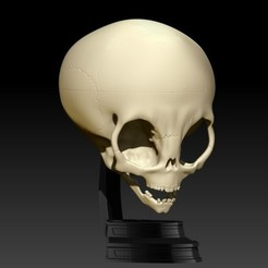 Imprimir en 3D GREY ALIEN SKULL V2 WITH BASE, SKULLHILL
