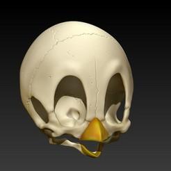 Descargar diseños 3D tweety skull, SKULLHILL