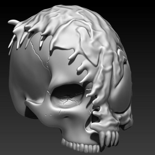 8.jpg Download STL file VENOM SKULL V2 • Model to 3D print, SKULLHILL