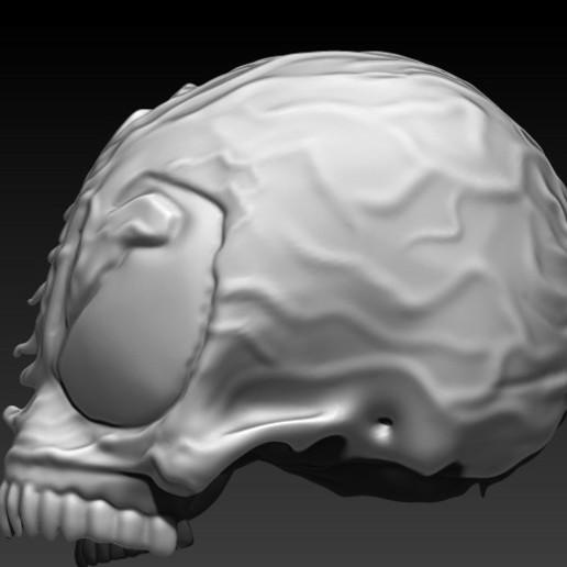3.jpg Download STL file VENOM SKULL V2 • Model to 3D print, SKULLHILL