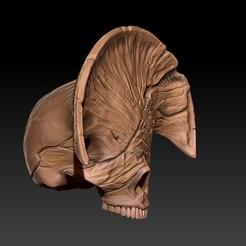Descargar modelos 3D para imprimir skull death from Hellboy 2, SKULLHILL
