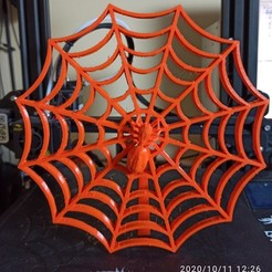IMG_20201011_122601.jpg Download free STL file Spider's Web • 3D printing design, Doenix