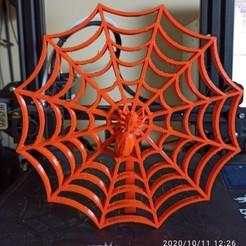 IMG_20201011_122601.jpg Télécharger fichier STL gratuit Toile d'araignée • Plan à imprimer en 3D, Doenix