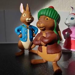 5.jpg Télécharger fichier STL Benjamin Bunny | Peter Rabbit Fan Art • Objet pour impression 3D, adamantiz