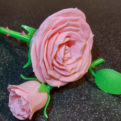 Download 3D printer designs Adam's 3D Printable Rose ©, adamantiz