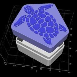 schild1.jpg Descargar archivo STL Caja de almacenamiento de tortugas • Plan para la impresión en 3D, miranda77mr