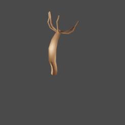 Download 3D model Hydra: Hydrozoa, DarkDav