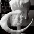 Immagine 2020-10-18 133258.png Download STL file Skull Spectral 3D Stl • 3D print object, manueldx95