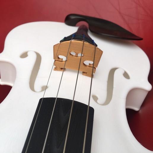 IMG_9840.jpg Download free STL file Violin • 3D print design, jteix