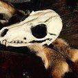 Télécharger objet 3D gratuit Masque de chaman, wilfredoaristo