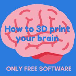 Télécharger objet 3D gratuit Comment imprimer votre cerveau en 3D, maxsiebenschlaefer13