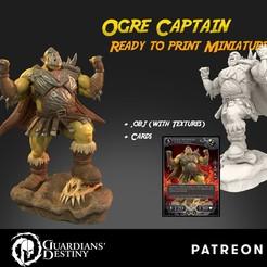 Ogre Captain cubebrush.jpg Télécharger fichier STL Capitaine d'ogre • Design imprimable en 3D, guardiansdestiny2019