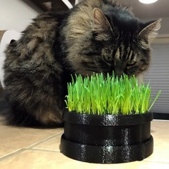 Download free STL file Cat Grass Planter • 3D printing model, SSilver