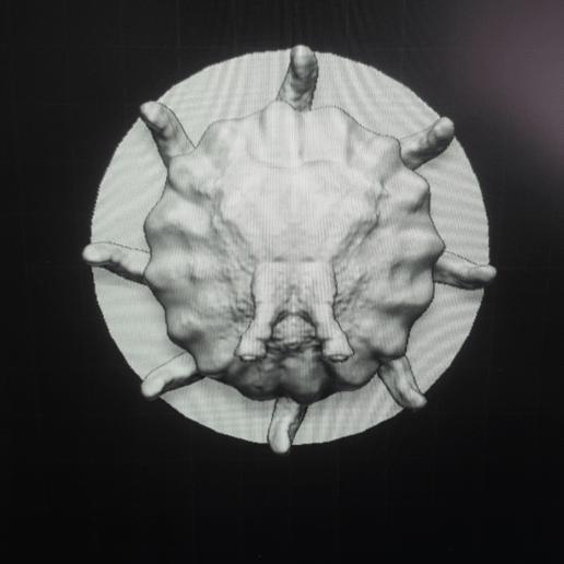 image.png Télécharger fichier OBJ gratuit Flumph • Objet pour impression 3D, kphillsculpting