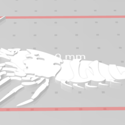 Capture.PNG Download free STL file Shrimp • 3D printing design, iFoxRage