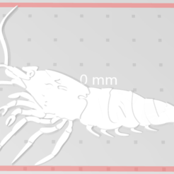 Download free STL file SHRIMP, iFoxRage