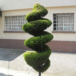 Download free 3D printer files Tree in Mexico, JuanG3D
