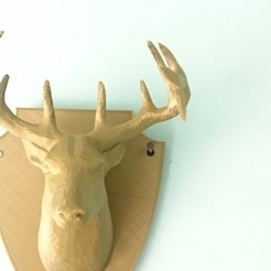 Download free 3D printing files Deer Hook/ Coat Hanger, wwwkenzcomz