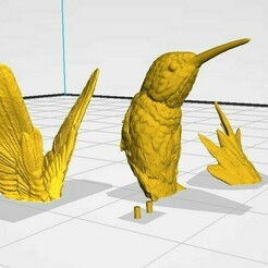 colibri slicer.jpg Télécharger fichier STL colibri • Design pour impression 3D, totaljimenez-m