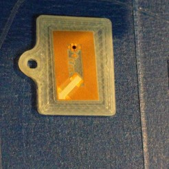 Télécharger fichier STL gratuit Zipnfc Plaque d'identification pour animaux, loclhst