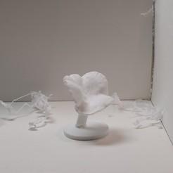 DSC_0694.jpg Télécharger fichier STL chanterelle #4 • Objet imprimable en 3D, eman1030b
