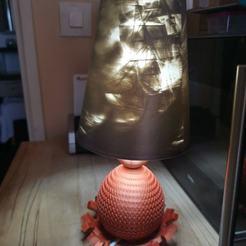 124540518_10221960546695563_385049026991583172_o.jpg Download STL file Dragon Lamp • Design to 3D print, smouf123