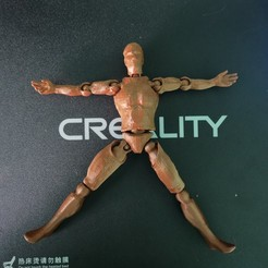 IMG_20200125_111406.jpg Download STL file Human Body • 3D print object, cheandrou