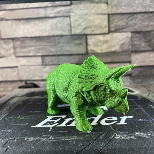 Télécharger fichier STL gratuit Triceratops, itech3dp
