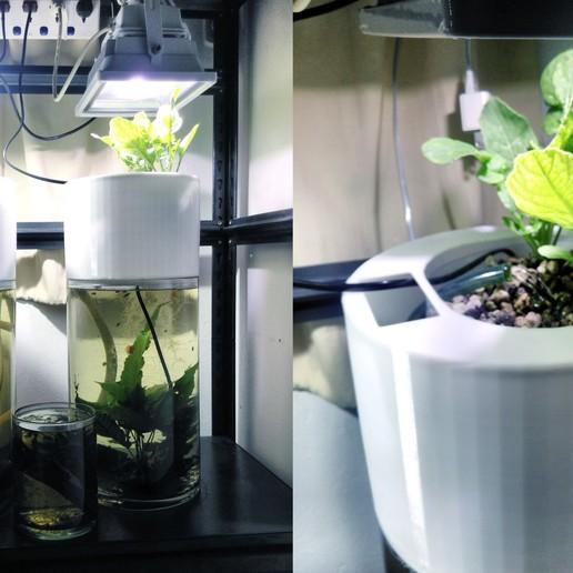 Download free STL file Tabletop Aquaponics System • 3D print model, AppliedTechnologyLab