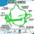 1.jpg Download free STL file Hermetic Mask • 3D print design, Checho3d