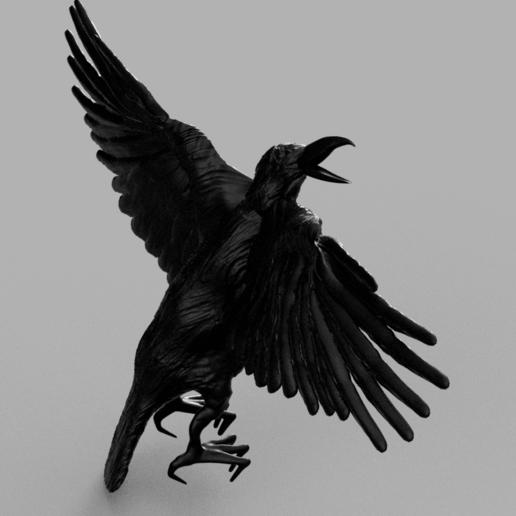 werrwee2.png Télécharger fichier STL gratuit Corbeau • Modèle pour imprimante 3D, quaddalone