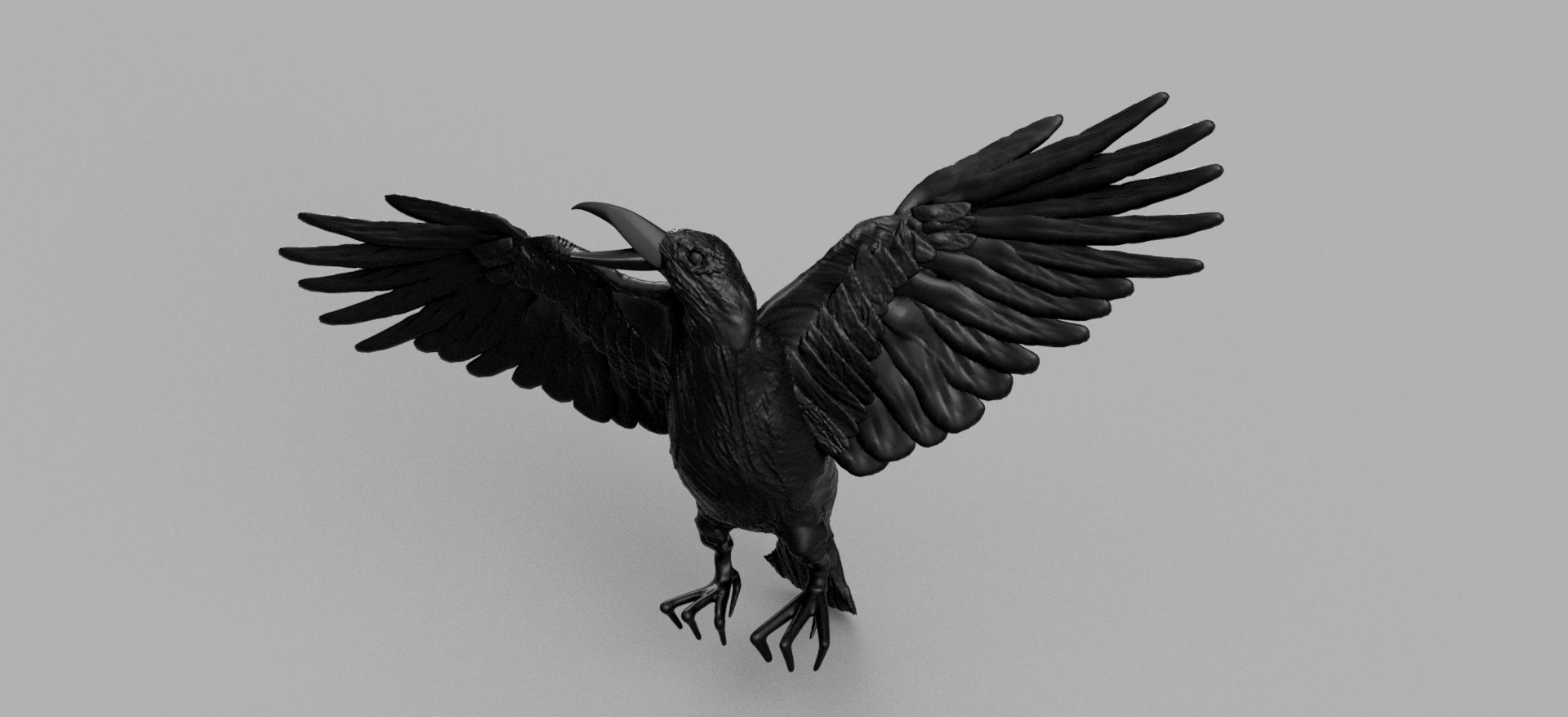 werrwee.png Télécharger fichier STL gratuit Corbeau • Modèle pour imprimante 3D, quaddalone