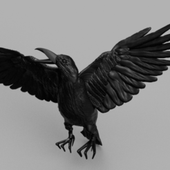 Download free STL file Crow • 3D printer template, quaddalone