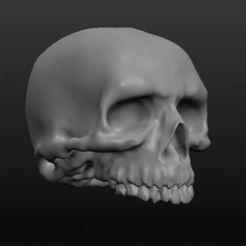 Download free 3D printer designs Another Skull!, xEliteAnubisx