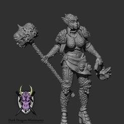 Download 3D printing models THE PALADIN MINIATURE (DND, WARHAMMER, KINGDOM DEATH, PATHFINDER, MINI), darkdragonminiatures
