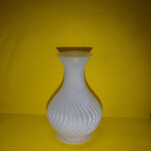 IMG_20181201_191150616.jpg Download free STL file Vase • Object to 3D print, montuparmar1