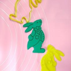 IMG_20201019_023852.jpg Télécharger fichier STL Alice au pays des merveilles lapin blanc 8cm • Modèle pour imprimante 3D, garma10