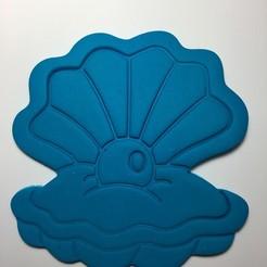 IMG_2837.JPG Download STL file Seashell • 3D printing object, garma10