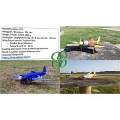 Download 3D model Hawker Sea Fury 1/12 electric RC plane, ADDIMP3D