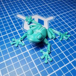 Download STL file Cute Flexi Print-in-Place Frog • Template to 3D print, technauseated