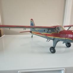 Descargar archivos 3D gratis Free RC airplane, pmannering1