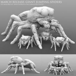 Giant Jumping Spider Patreon Release.jpg Download STL file Giant Jumping Spiders • 3D printable model, LabradoriteWolf