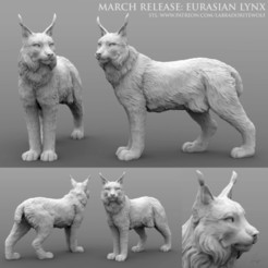 Download 3D printer designs Eurasian Lynx, LabradoriteWolf